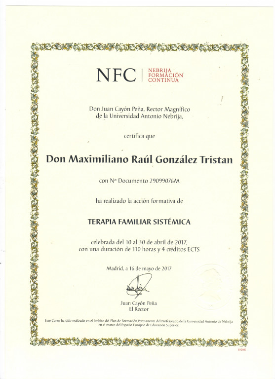 portfolio 4/4  - TERAPIA FAMILIAR SISTÉMICA