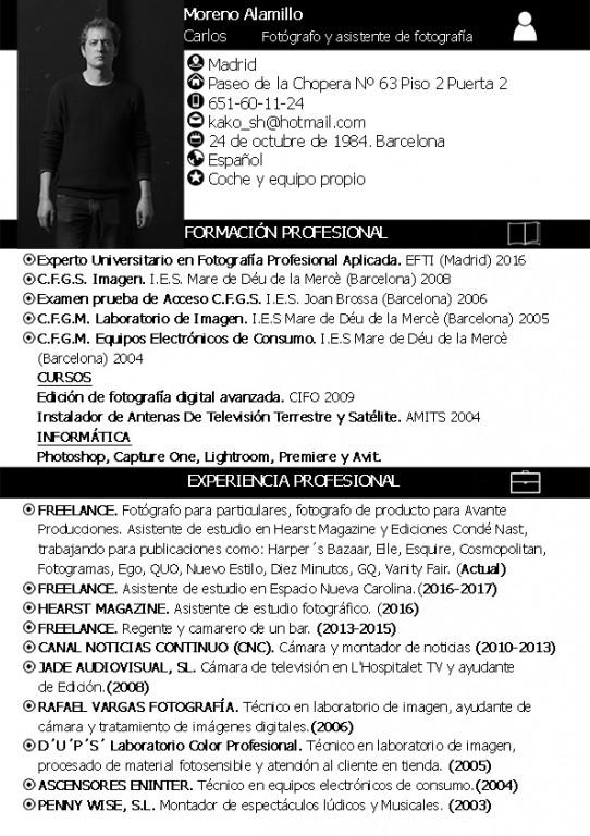 portfolio 24/26  - curriculum