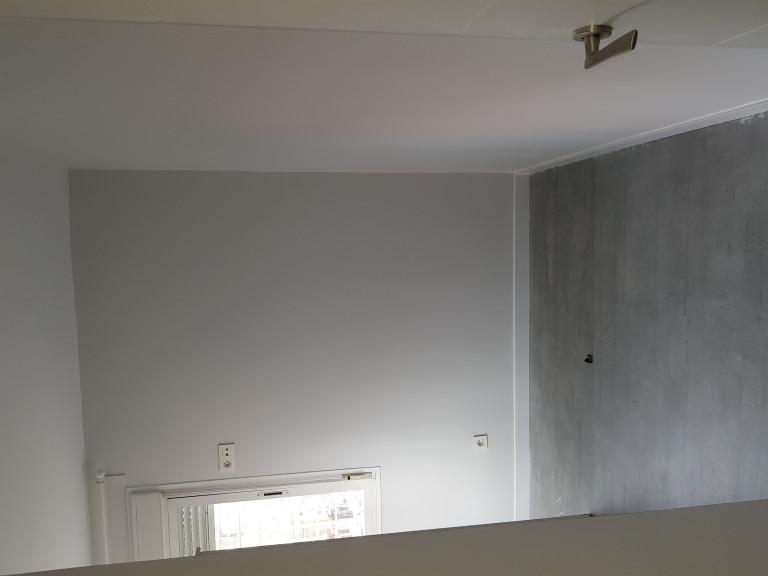 portfolio 71/287  - trabajo de `pintura en liso