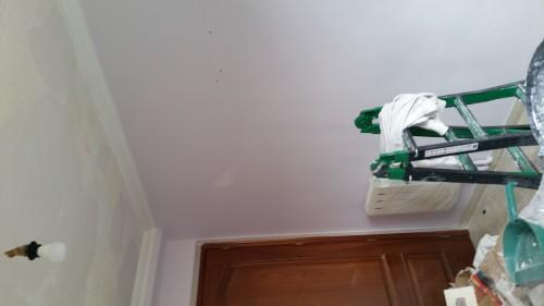 portfolio 152/287  - pintura  en liso en un  piso de  70m2