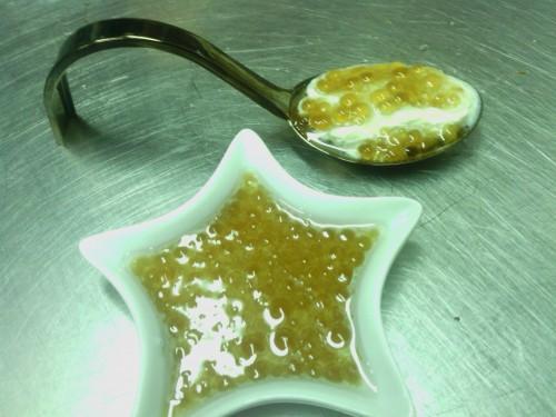 portfolio 11/22  - caviar de manzana