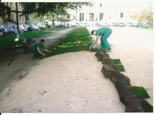 portfolio 9/19  - preparando la colocación de césped en tepe