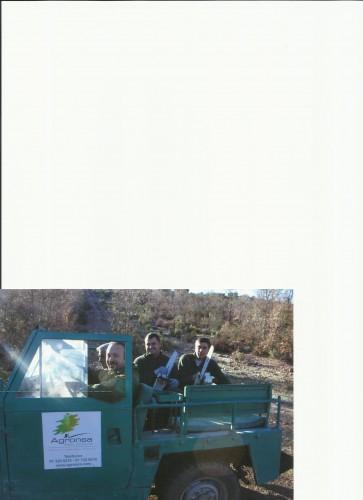portfolio 16/19  - equipo de trabajo forestal