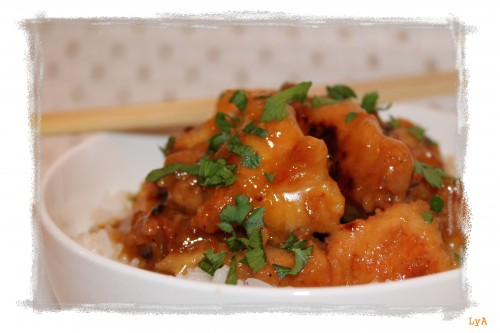 portfolio 27/35  - Orange chicken chino