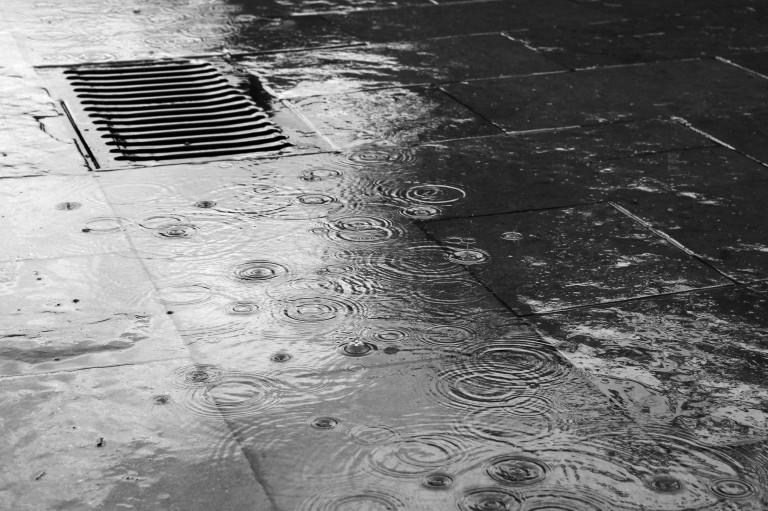 portfolio 8/12  - Rain