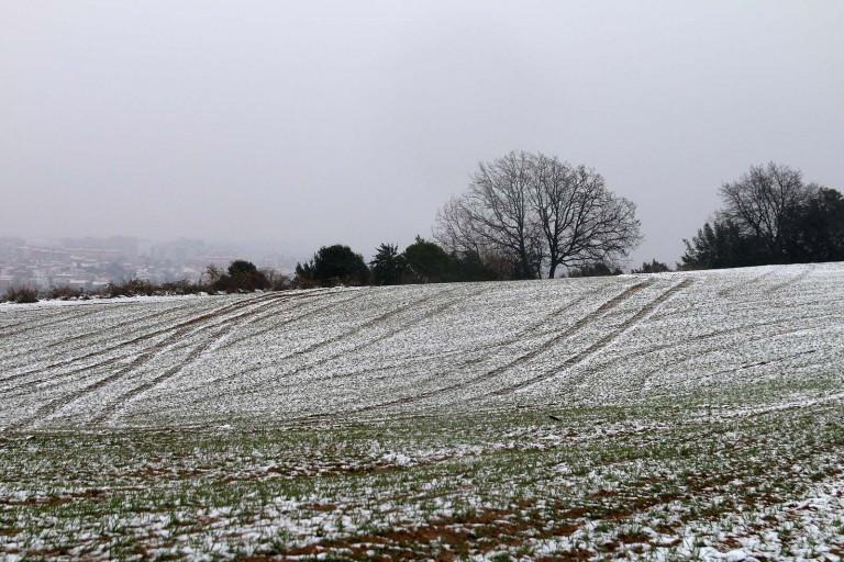 portfolio 5/12  - Snow